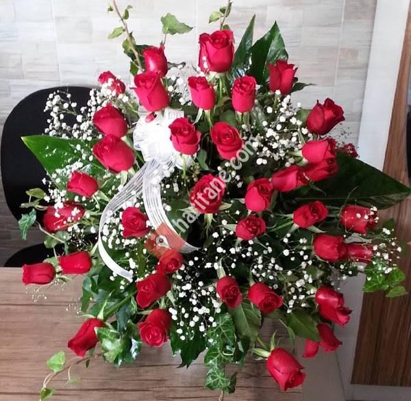 Ankara çiçek bahçesi