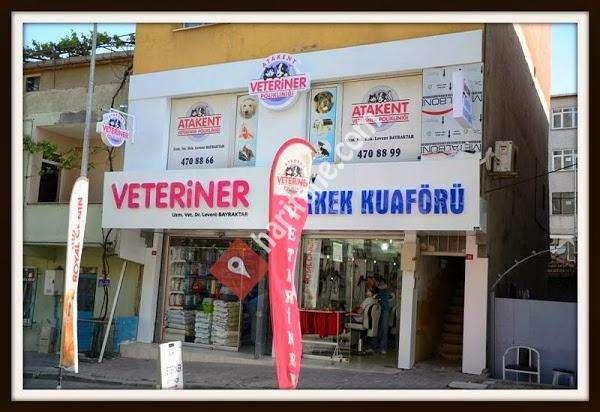 Veteriner Kliniği (Severodvinsk): açıklama, adres