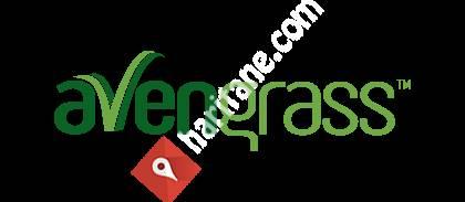 AvenGrass - Suni Çim Üreticisi