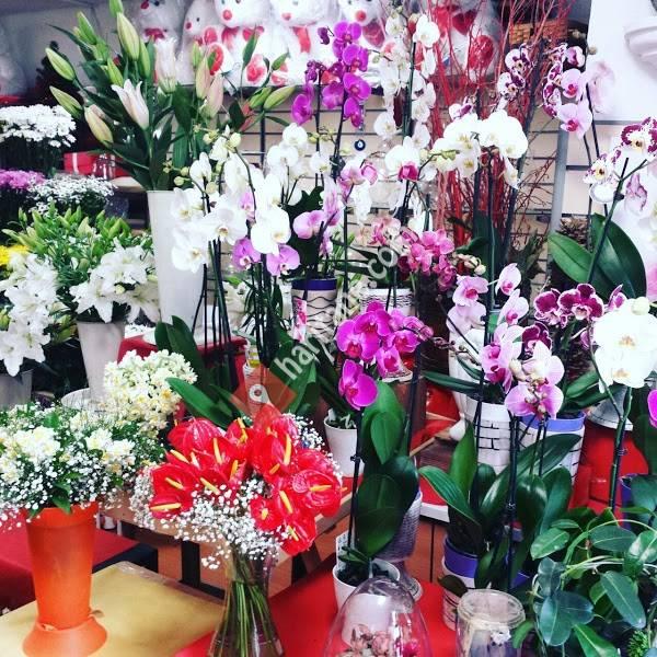 Ekin Çiçekçilik