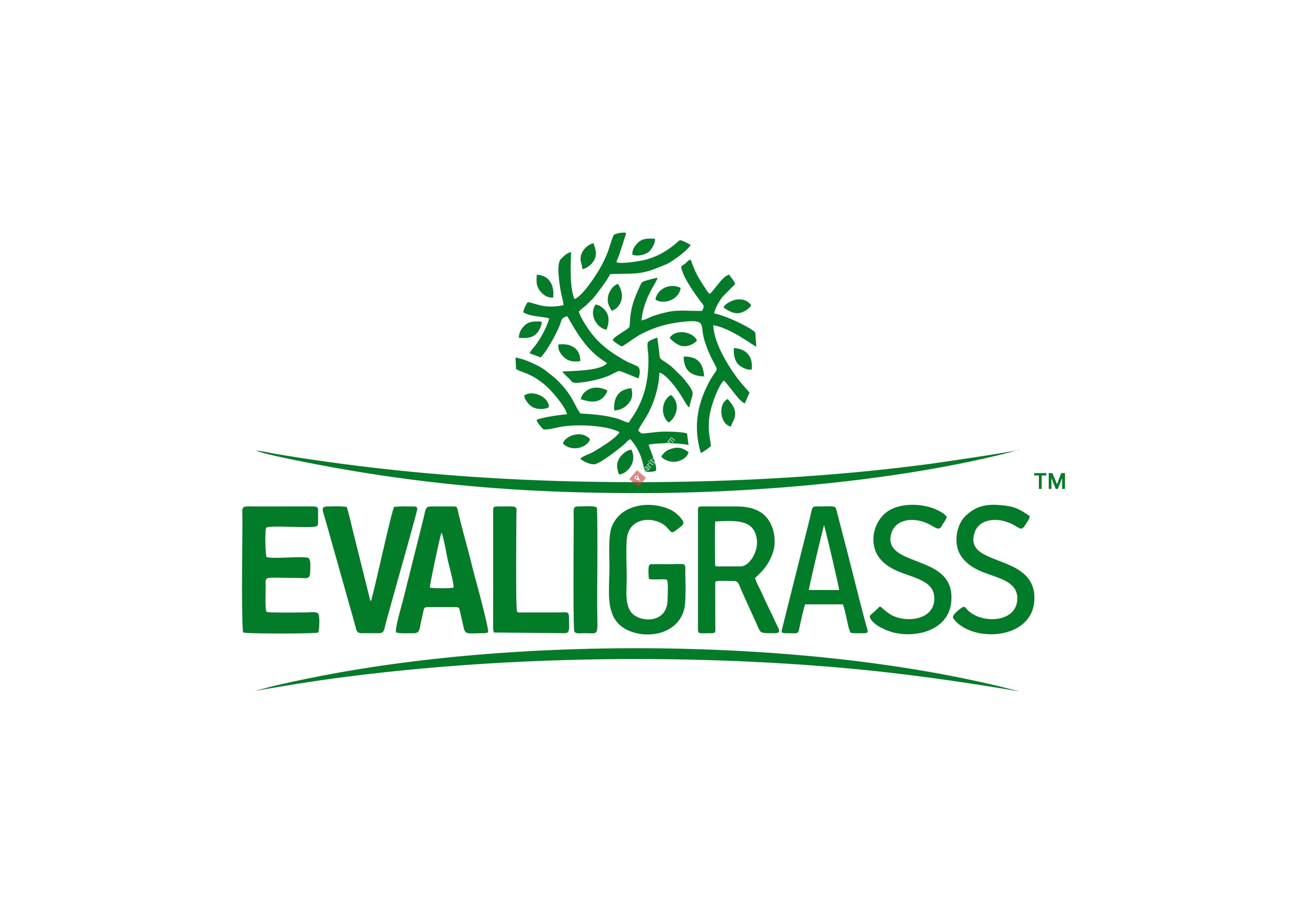Evaligrass – Grass Fence Manufacturer