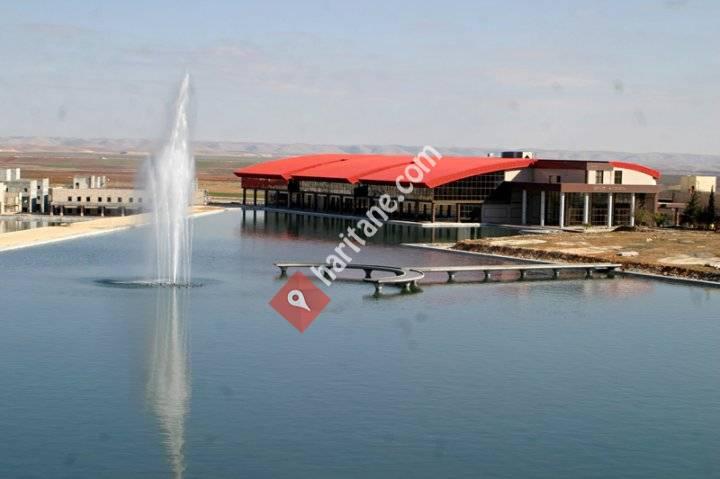 Harran Üniversitesi İtiraf Platformu