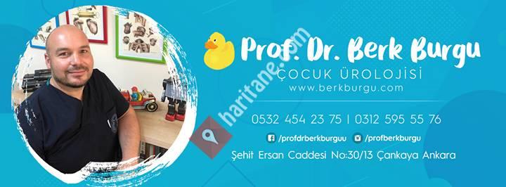 Prof. Dr. Berk Burgu